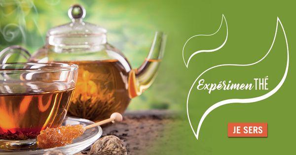(Format B) Expérimen'thé