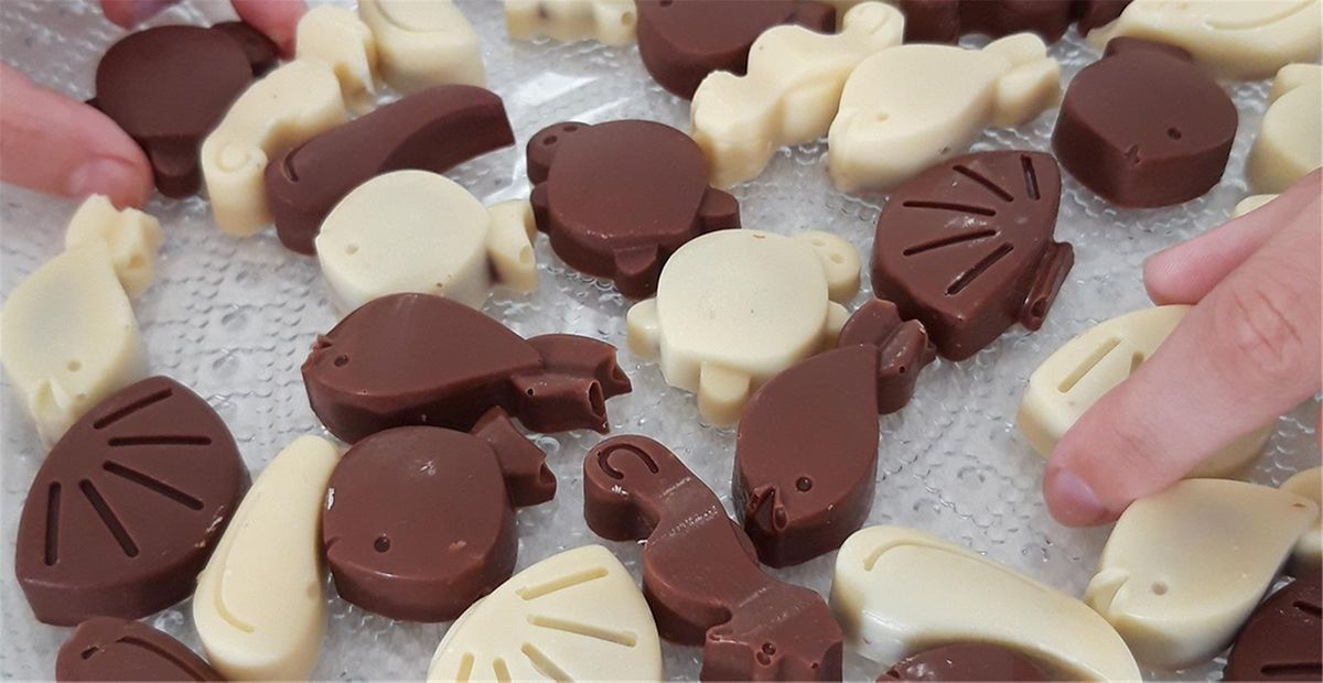 Chocolats fourrés pralinés