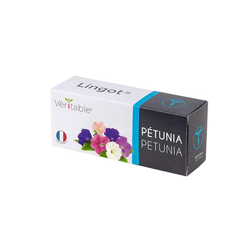 Recharge pour potager d´intérieur Véritable pétunia bio- Véritable
