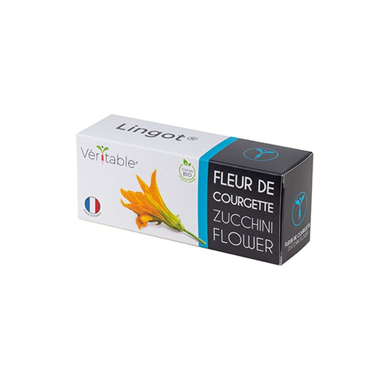 Recharge pour potager d´intérieur Véritable fleur de courgette bio- Véritable