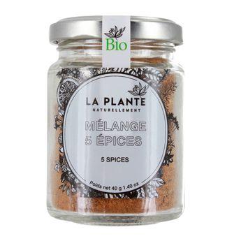 Mélange 5 epices BIO 40g - La Plante